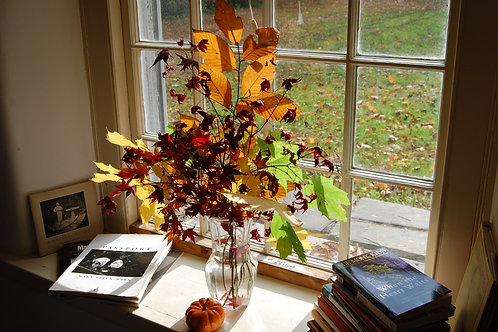 Fall Leaves in Vase in Window with Books