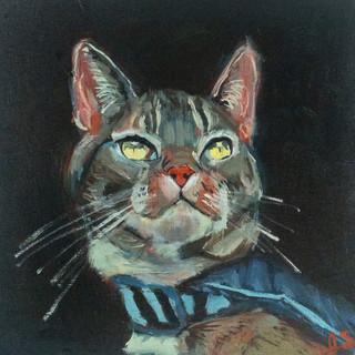 Eugene the cat.jpg