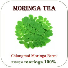moringa%20tea_edited.jpg