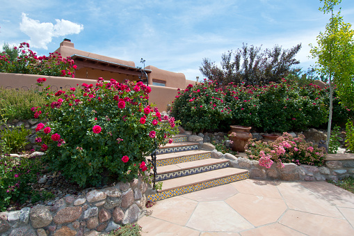 Flagstone and steps ABQ