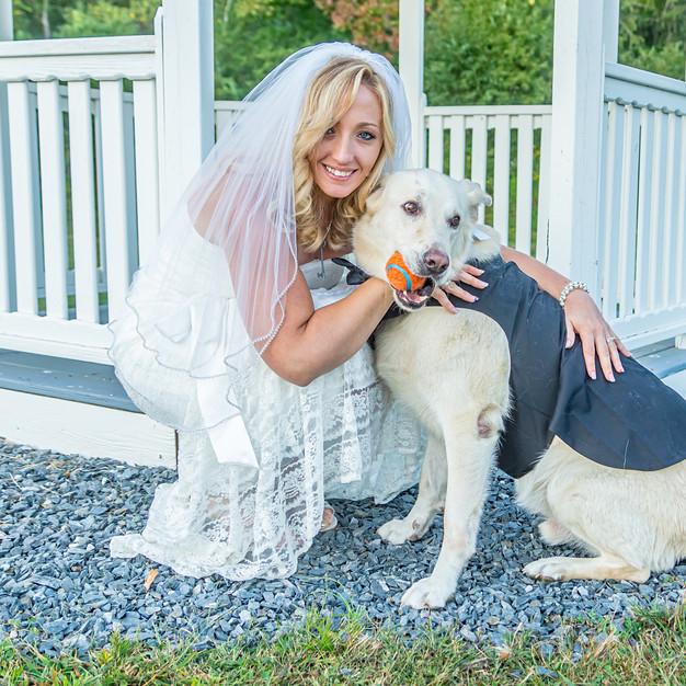 Farrar Wedding - Bride & Doggie