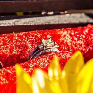 Farrar Bride's Ring