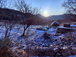 Sunrise at vineyards