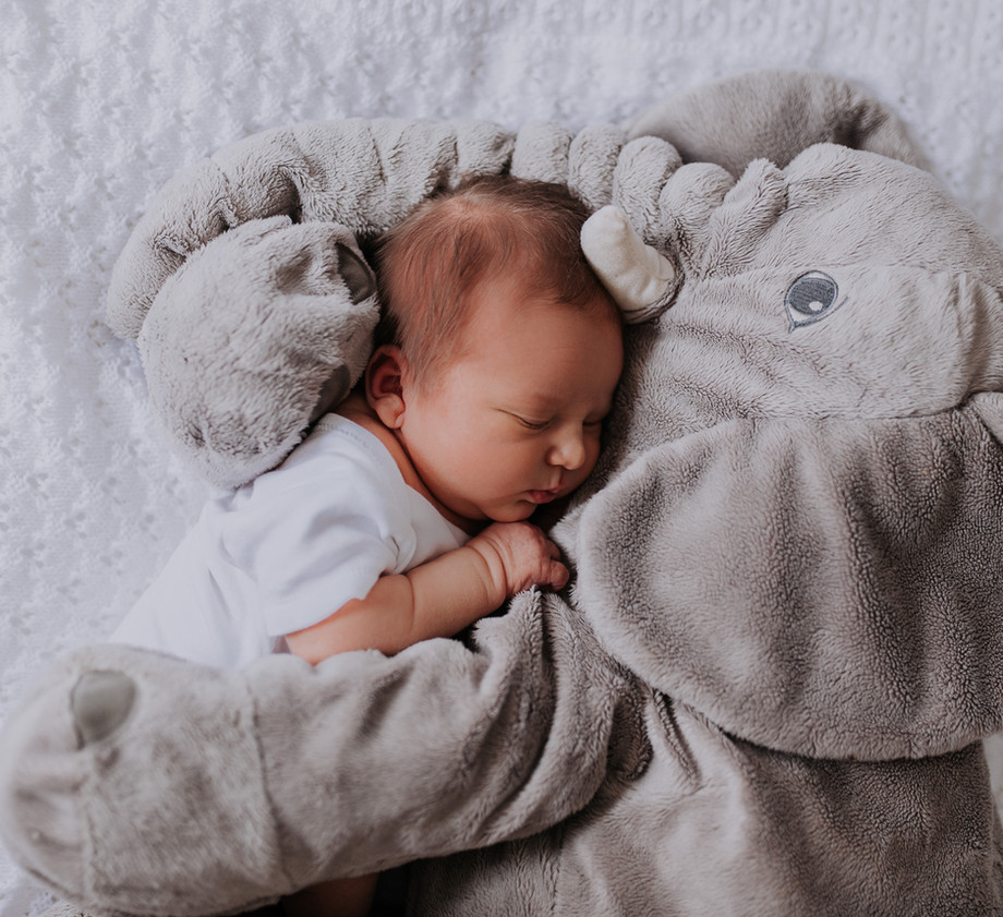 Newborn Baby Home Photoshoot with elephant