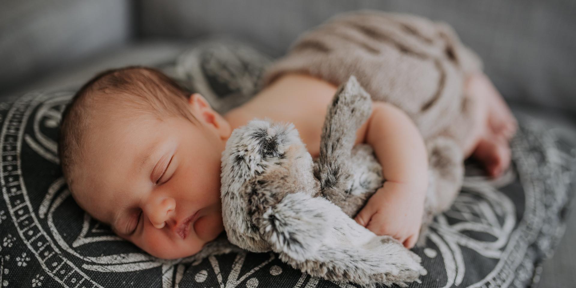 Newborn Baby Home Photoshoot with bunny