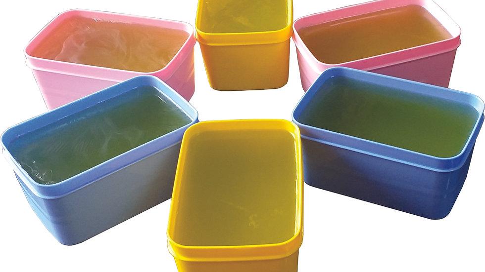 Formas De Sabão 250 Ml (sabão Barra) 10 Unid / Pote Plástico