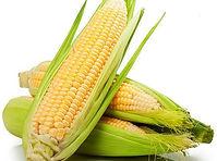 Corn-loose_505ef188-e980-4a5c-91f0-3bc8d