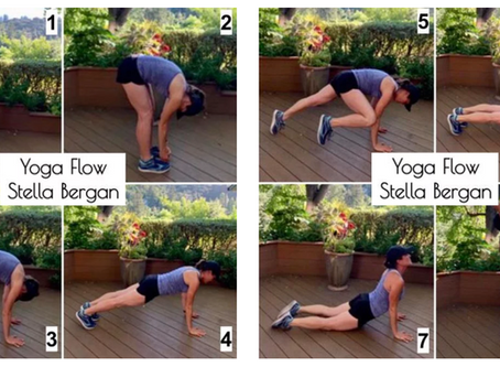 If you Have 10 Minutes to Exercise, What Would You Do? by, Stella Bergan, MEd