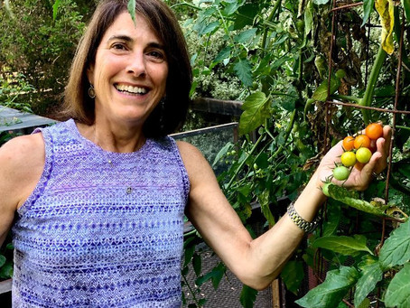Reflections from a Vegetable Gardener by Jeanne Rosner, MD