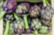 martin-adams-560777-unsplash 2.jpg