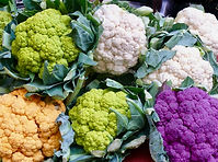 CAULIFLOWER2016 2.jpg