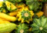 summer-squash-533x398_edited.jpg