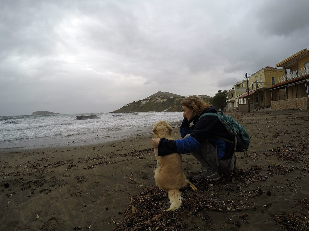 Собака-спасака