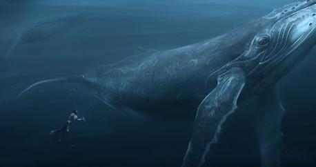 Blue_Whale_Size_0000.jpg