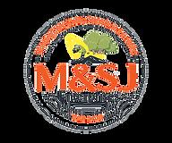 msj logo yellow.png