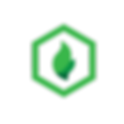 WEBICONS-05.png
