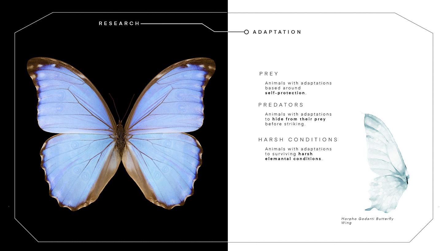 Presentation-LayoutArtboard-4.png