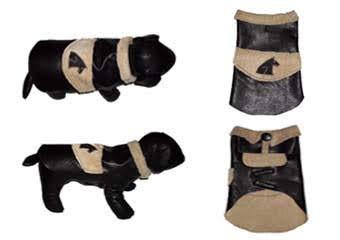 black and tan dog coat