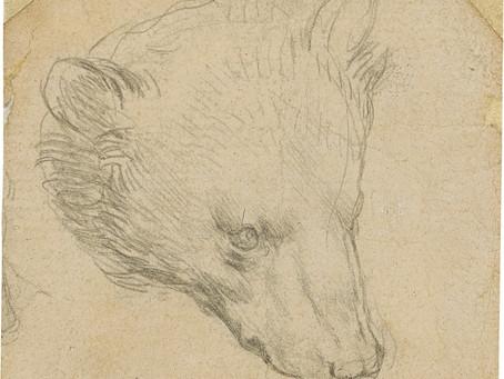 Leonardo da Vinci: Desenho raro deve quebrar o recorde de leilões do artista