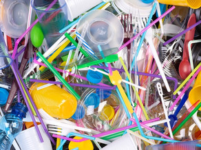 Nova Zelândia banirá o uso de plásticos descartáveis até 2025