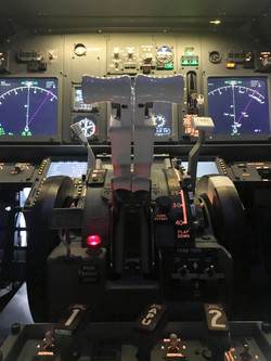 Boeing 737 Throttle