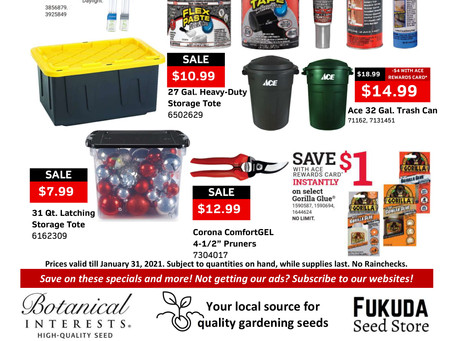 Start 2021 with these great savings!