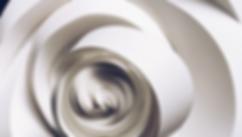 Capture d'écran 2019-03-04 à 15.22.01.pn