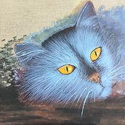 Feeling Blue Cat