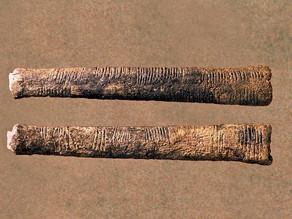 The Ishango Bone