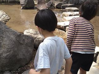 敷島公園🏞(朝日)