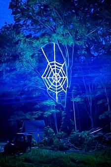 SpiderwebMystical.JPG