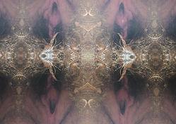 Peggy Reeves_ Menopause 3 (SARAH NICHOLS