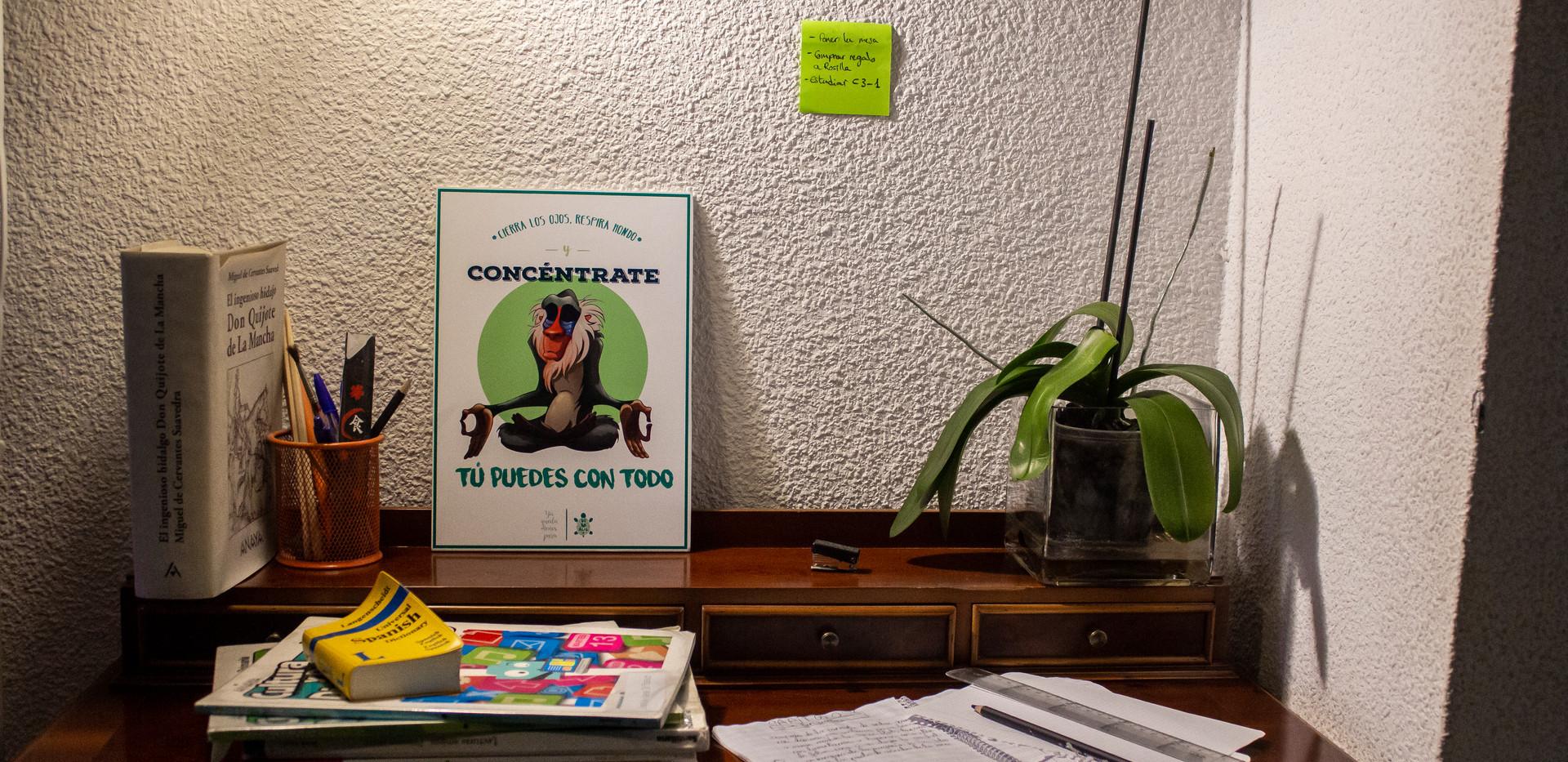 foto-ilustracion-rey-leon-detalle.jpg