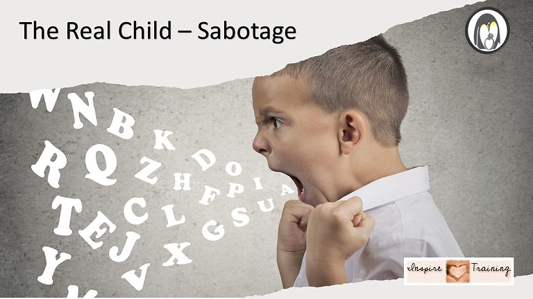 The Real Child – Sabotage