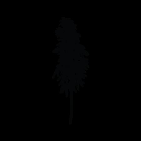 6_bamb-01.png