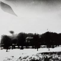 13 Дельфин 3.jpg