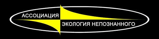 Эмблема АЭН чёрно-жёлтая.jpg