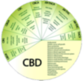 CBD Oil Function Whee