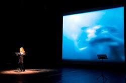 MitreoFilmFestival 2013