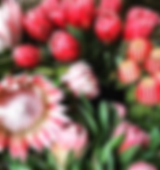 Tullys Flowers.png