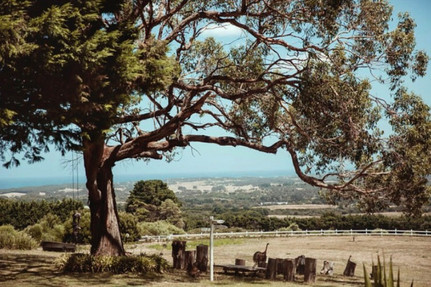Villa Floretti Mornington Peninsula 25.j