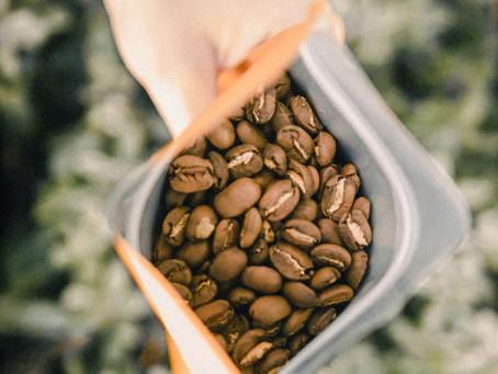 Data przydatności kawy ziarnistej czy data palenia - co jest ważniejsze?