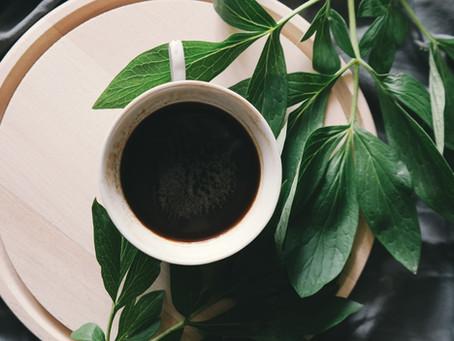 Poznaj nasze kawy - Przewodnik