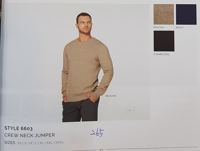 Style 6603 Crew Neck Jumper