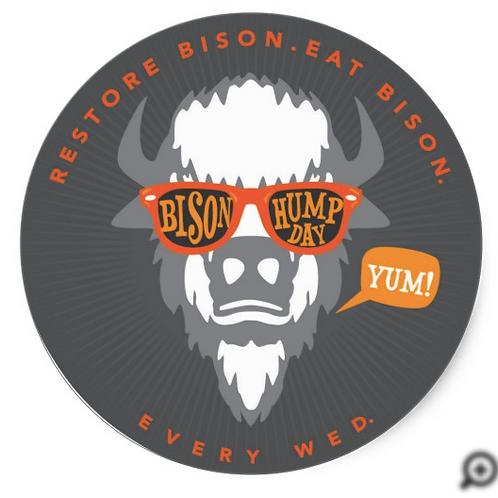 Bison Hump Day Sticker