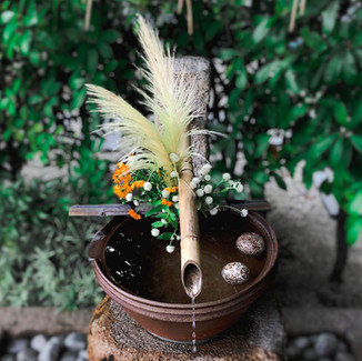 出雲大神宮 岡山 神社 手水舎 花手水 コスモス 秋桜 パンパスグラス センニチコウ 浮き玉