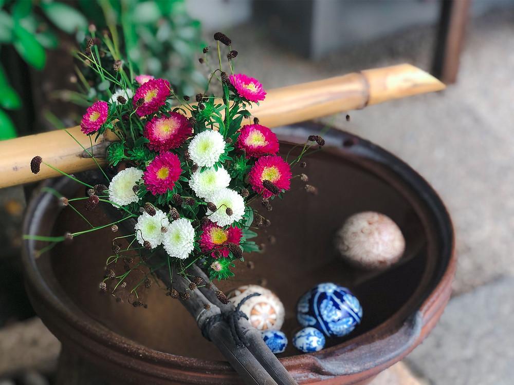 出雲大神宮 岡山 神社 地鎮祭 手水舎 花手水 菊 ワレモコウ 浮き玉