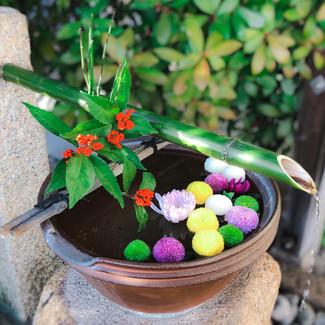 出雲大神宮 岡山 神社 手水舎 花手水 正月 迎春 初詣 菊 マム ポンポンマム 南天