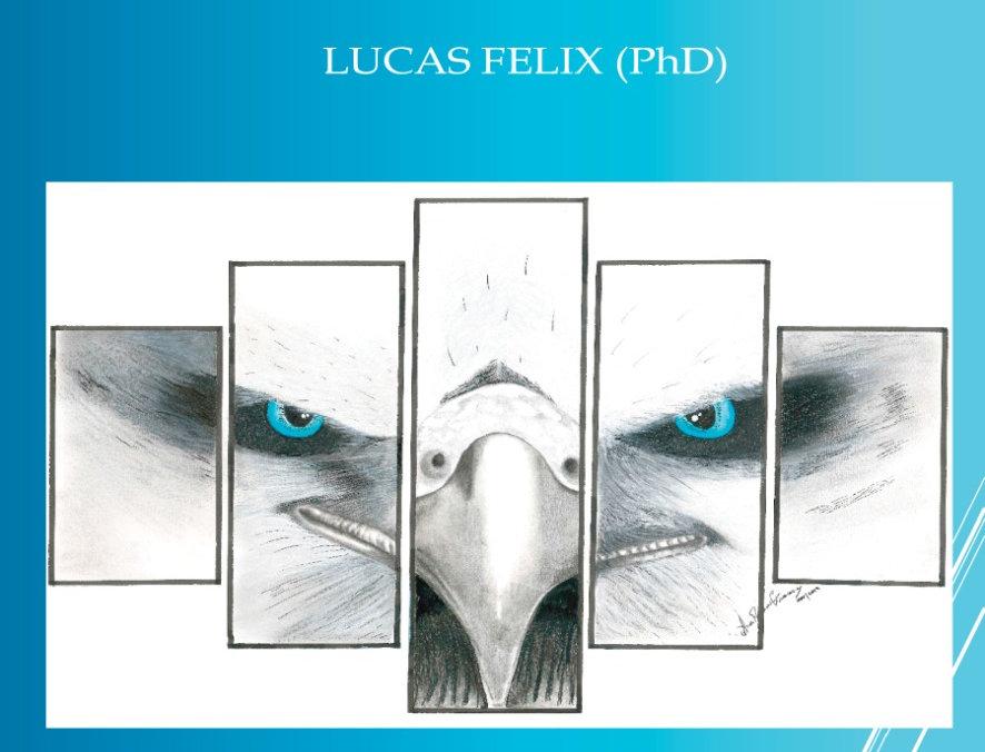 CASTANEDA - UM OLHAR COM CORAÇÃO - LUCAS FELIX