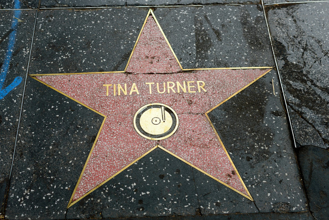 Tina Turner Husband Gave Her a Kidney for Transplant